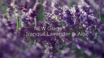 Glade PlugIns Scented Oil TV Spot, 'Tranquil Lavender & Aloe' - Thumbnail 2