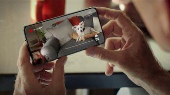 Consumer Cellular TV Spot, 'Frankie: Talk, Text, Data $20+ a Month' - Thumbnail 8
