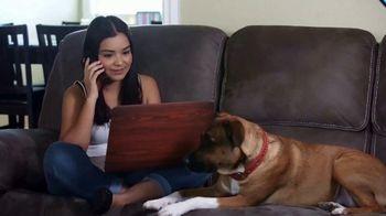 Animal Behavior College TV Spot, 'Certification' - Thumbnail 9