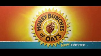 Frosted Honey Bunches of Oats TV Spot, 'Searched Far and Wide' - Thumbnail 1