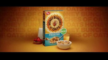 Frosted Honey Bunches of Oats TV Spot, 'Searched Far and Wide' - Thumbnail 10