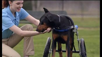 Honda TV Spot, 'Random Acts of Helpfulness: Dog Wheels' [T2]