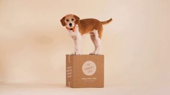 The Farmer's Dog TV Spot, 'Built to Eat: 50 Percent Off First Box'