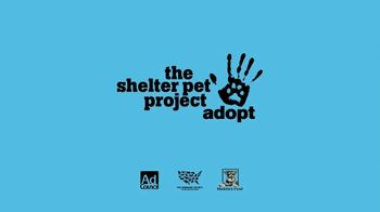 The Shelter Pet Project TV Spot, 'Prince' - Thumbnail 9