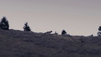 Film the Hunt TV Spot, 'Next Step'