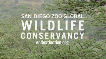 San Diego Zoo TV Spot, 'Giraffes on the Endangered Species List' - Thumbnail 6