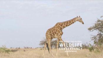 San Diego Zoo TV Spot, 'Giraffes on the Endangered Species List' - Thumbnail 1