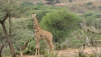 San Diego Zoo TV Spot, 'Giraffes on the Endangered Species List' - Thumbnail 5