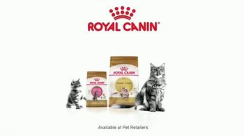 Royal Canin TV Spot, 'Health Needs You Don't See' - Thumbnail 10