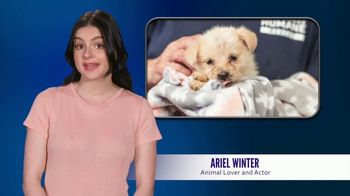 American Humane Association TV Spot, 'Protect Our Best Friends' Featuring Ariel Winter