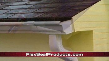 Flex Seal TV Spot, 'Family of Products: Protect Virtually Everything: Testimonials' - Thumbnail 8
