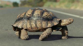 2019 Volkswagen Atlas TV Spot, 'Tortoise' [T2] - Thumbnail 4