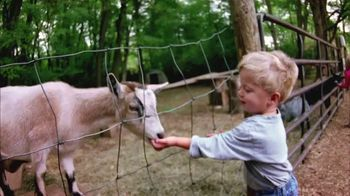 American Humane Association TV Spot, '100 Years' Featuring Alison Sweeney - Thumbnail 2