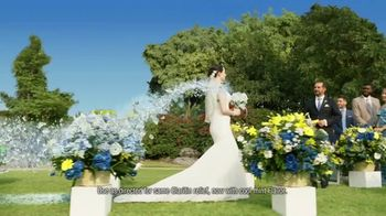Claritin Chewables TV Spot, 'Feel the Clarity: Wedding' - Thumbnail 5