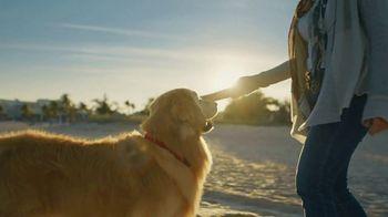 WeatherTech Super Bowl 2020 TV Spot, 'Lucky Dog' - Thumbnail 2