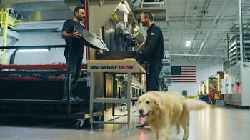 WeatherTech Super Bowl 2020 TV Spot, 'Lucky Dog'