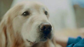 WeatherTech Super Bowl 2020 TV Spot, 'Lucky Dog' - Thumbnail 8