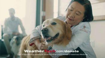 WeatherTech Super Bowl 2020 TV Spot, 'Lucky Dog' - Thumbnail 9