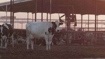 Holstein Association USA, Inc. TV Spot, 'Holstein Complete: Added Value' - Thumbnail 3