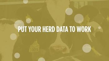 Holstein Association USA, Inc. TV Spot, 'Enlight: Herd Data' - Thumbnail 7