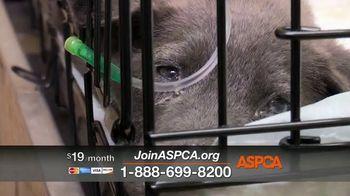 ASPCA TV Spot, 'Medical Staff' - Thumbnail 10