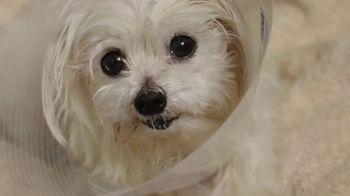 ASPCA TV Spot, 'Medical Staff' - Thumbnail 5