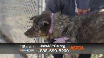 ASPCA TV Spot, 'Medical Staff' - Thumbnail 6