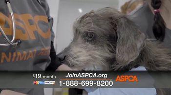 ASPCA TV Spot, 'Medical Staff' - Thumbnail 7