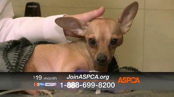 ASPCA TV Spot, 'Medical Staff' - Thumbnail 8
