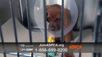 ASPCA TV Spot, 'Medical Staff' - Thumbnail 9