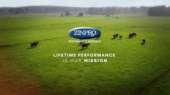 Zinpro TV Spot, 'Lifetime and Generational Performance' - Thumbnail 1