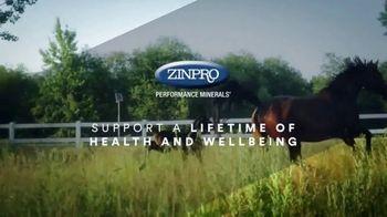 Zinpro TV Spot, 'Lifetime and Generational Performance' - Thumbnail 8