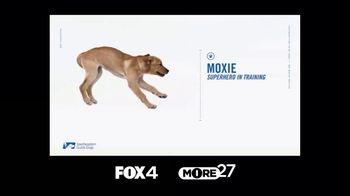 Southeastern Guide Dogs TV Spot, 'Anatomy of a Superhero: Moxie' - Thumbnail 1