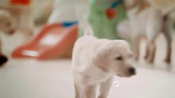 Southeastern Guide Dogs TV Spot, 'One Lucky Puppy: Sponsor a Puppy for $19 a Month' - Thumbnail 1