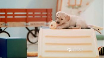 Southeastern Guide Dogs TV Spot, 'One Lucky Puppy: Sponsor a Puppy for $19 a Month' - Thumbnail 2