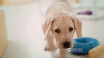 Southeastern Guide Dogs TV Spot, 'One Lucky Puppy: Sponsor a Puppy for $19 a Month' - Thumbnail 4
