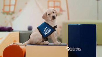 Southeastern Guide Dogs TV Spot, 'One Lucky Puppy: Sponsor a Puppy for $19 a Month' - Thumbnail 5