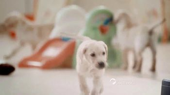 Southeastern Guide Dogs TV Spot, 'One Lucky Puppy: Sponsor a Puppy for $19 a Month' - Thumbnail 6