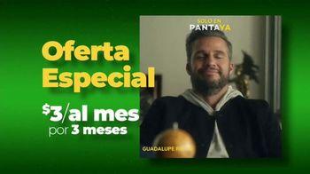 Pantaya TV Spot, 'Oferta: tres meses' [Spanish]