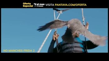 Pantaya TV Spot, 'Oferta: tres meses' [Spanish] - Thumbnail 8