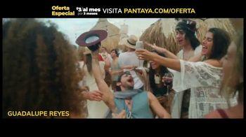 Pantaya TV Spot, 'Oferta: tres meses' [Spanish] - Thumbnail 9