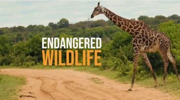San Diego Zoo TV Spot, 'The Fight to End Distinction'