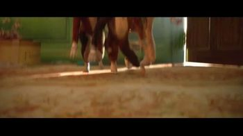 Cats - Alternate Trailer 56