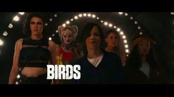 Birds of Prey - Alternate Trailer 100