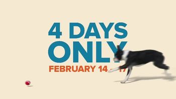 PetSmart Presidents Day Sale TV Spot, 'Dog Treats' - Thumbnail 8