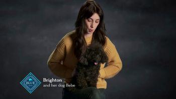 Blue Buffalo TV Spot, 'Brighton and Bebe' - Thumbnail 1