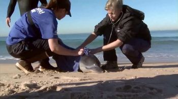 SeaWorld TV Spot, 'The World We All Share' - Thumbnail 3