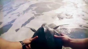 SeaWorld TV Spot, 'The World We All Share' - Thumbnail 6