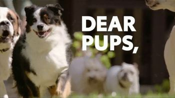 2019 Toyota Highlander TV Spot, 'Dear Pups' [T2]