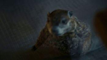 Indeed Skills Tests TV Spot, 'Groundhog' - Thumbnail 6